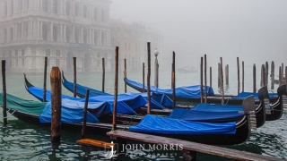 Venice Gondolas on a Foggy day